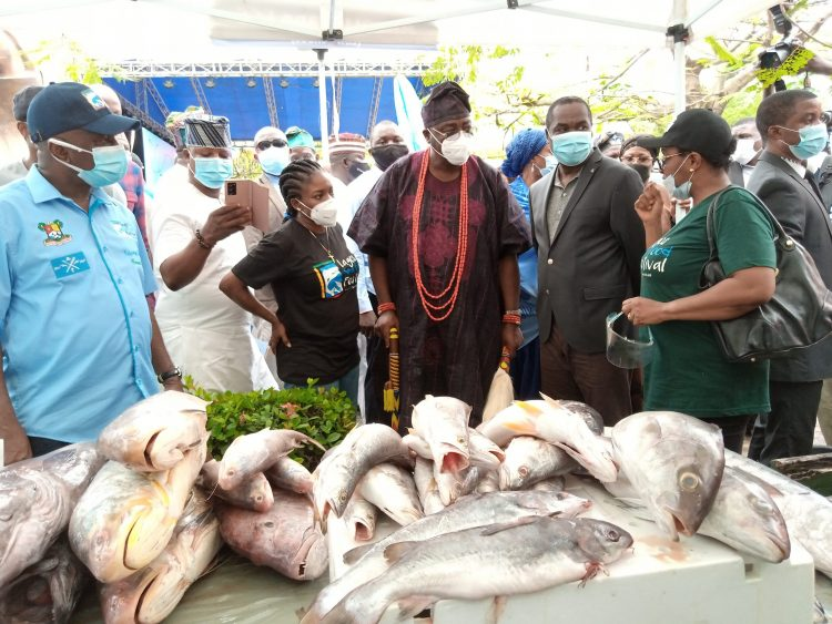 INVESTMENT OPPORTUNITY IN FISHERIES VALUE CHAIN